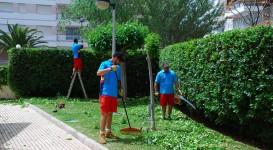 Proyectos | mantenimiento-273x150